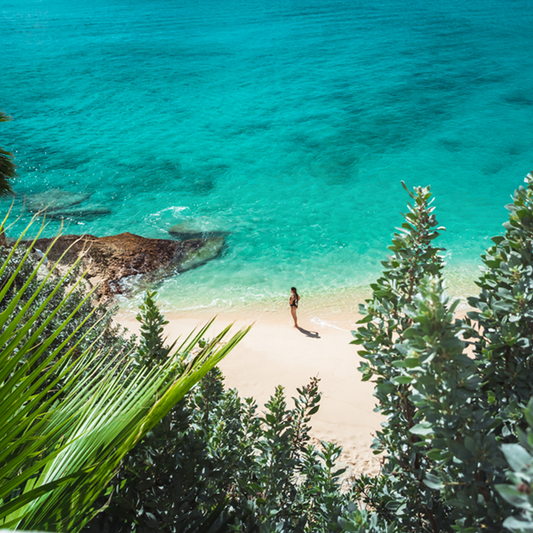 Live the Caribbean dream